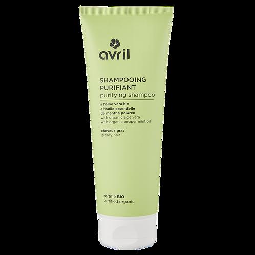 Purifying Shampoo - Certified organic