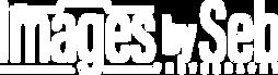 Sebastien Verstraet - IBSp_logo_black.pn