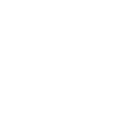 Brand Brothers logo 512x512 wit.png