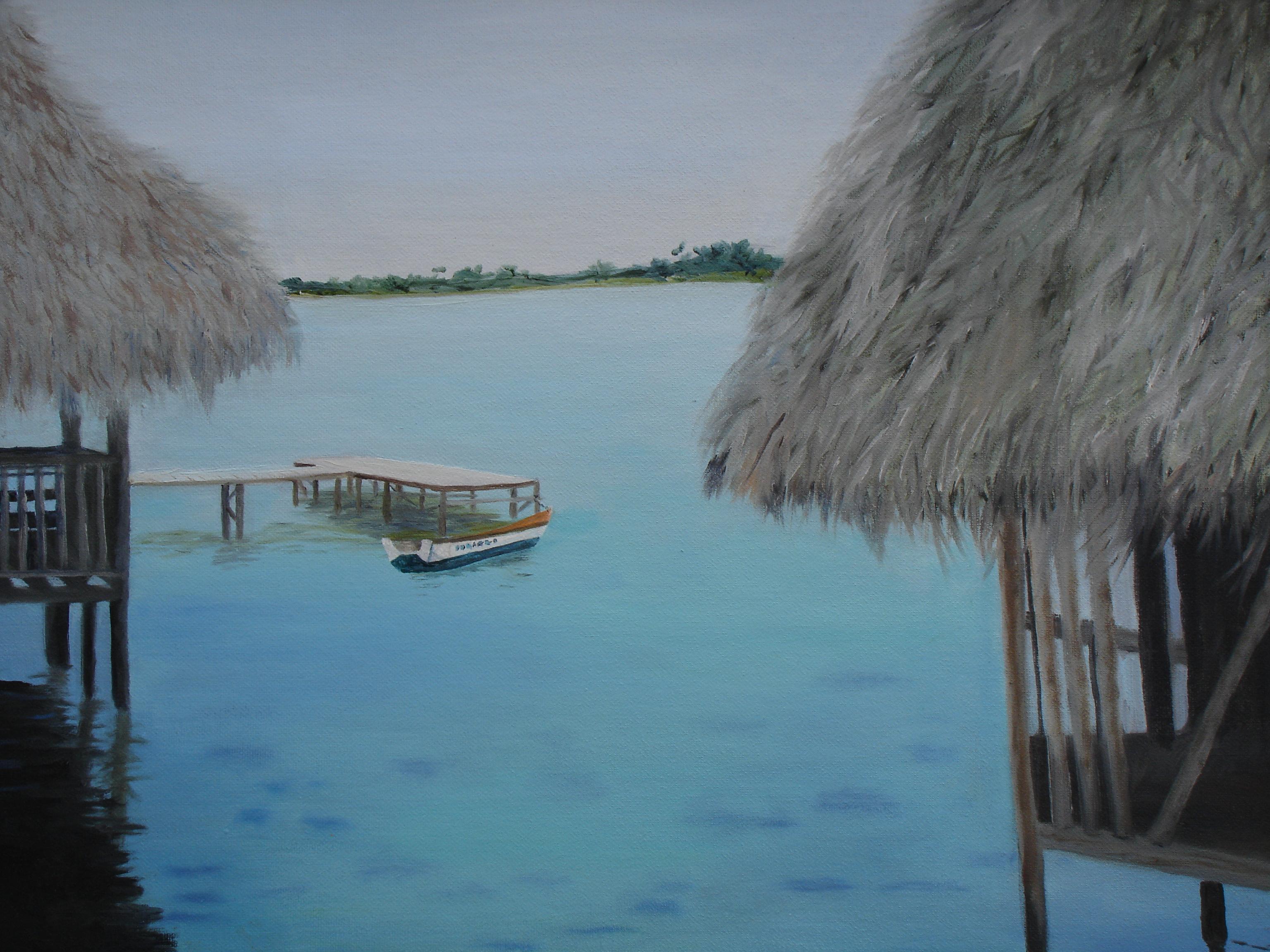 Panama Coral Reefs off Bocas Del Toro
