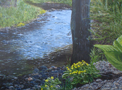 Spring Brook at Indian Meadow_edited