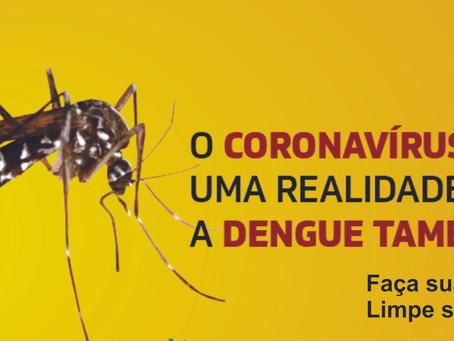 Vem aumentando casos  de dengue no Paraná