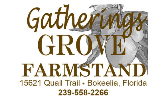 Gatherings Grove Farmstand Bag copy.png