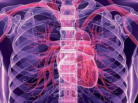 Pulsed Electromagnetic Field Cardiovascular Therapy