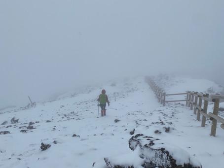 暖冬の南国の雪山