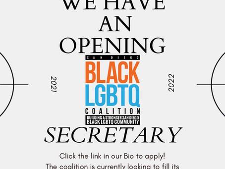 Volunteer Secretary Wanted