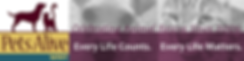 PAWNY Banner logo test.png