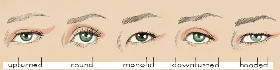 forme de ochi
