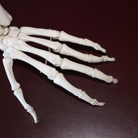 3D Printing - Medical.jpg