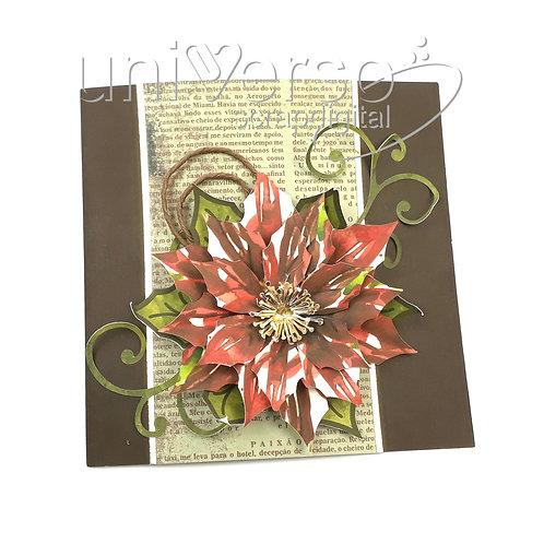 Cartão Poinsettia
