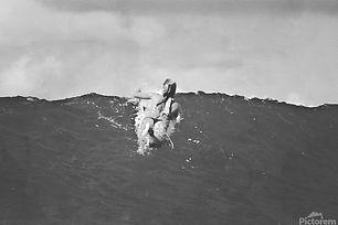 900_Surf-Posters_1-1.jpg
