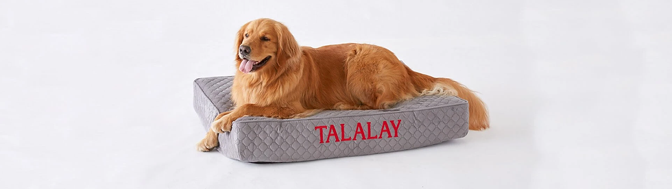 talalay_pet_bed_banner.jpg.webp