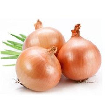 Onions/कांदा