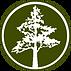 arbor memorial logo 2020.png