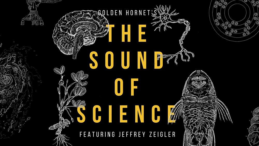 Jeffrey Zeigler - Sound of Science
