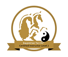 Level 2 Badge.png