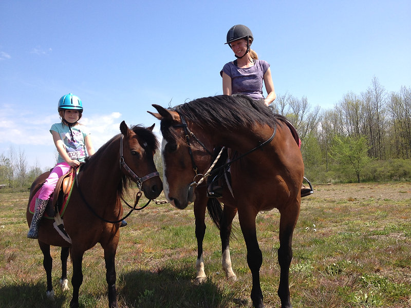Aisling Ridge Equestrian Centre