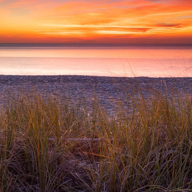 Sanibel Island Vibrant Sunset_.jpg