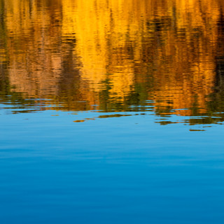 Thayer Fall Watercolor.jpg