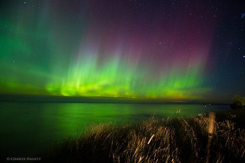 Northern Lights and Beach Grass