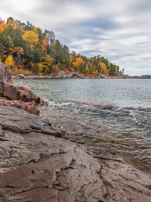Fall Color Shoreline Vertical