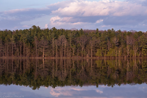 Thayer Lake Reflection