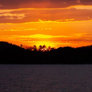 Sunset Tree Silhouette.jpg