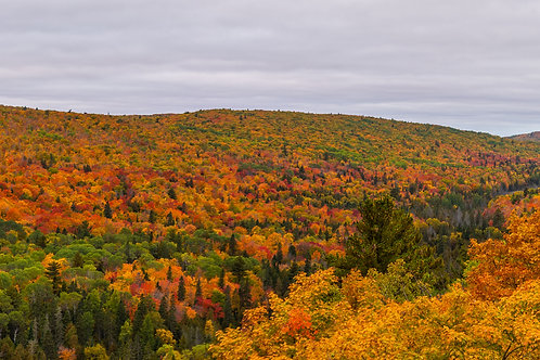 Fall Colors in the Keweenaw