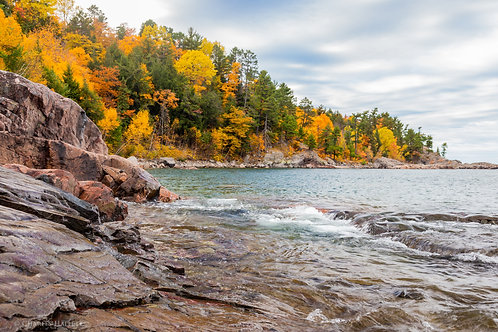 Fall Color on the Shoreline