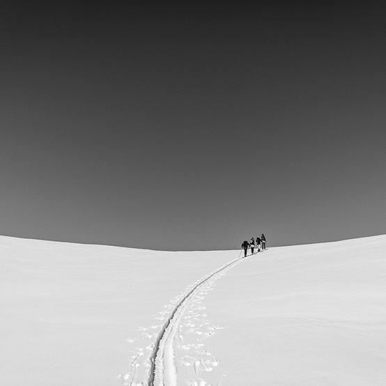 MATT-Winter-Houdini-Group-Nylander.jpg