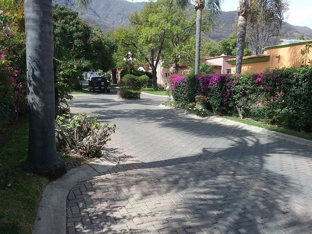 Tree lined brick streets of La Huerta, Ajijic