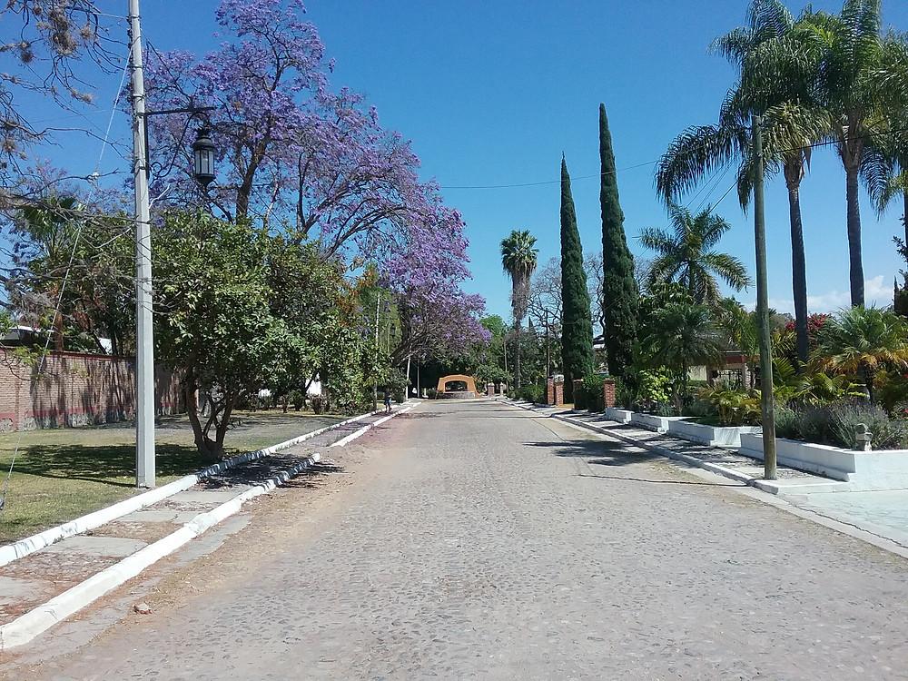 La Floresta street, Ajijic