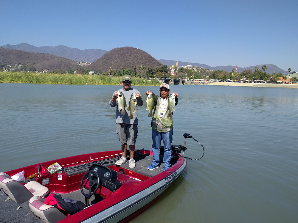 Bass from Lake Chapala