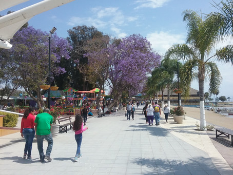 Fun Facts About Ajijic and Lake Chapala