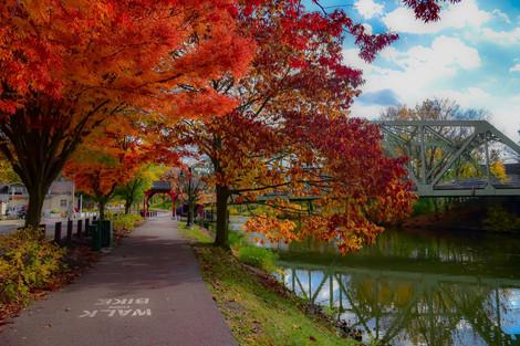 Fall in Schoen Place