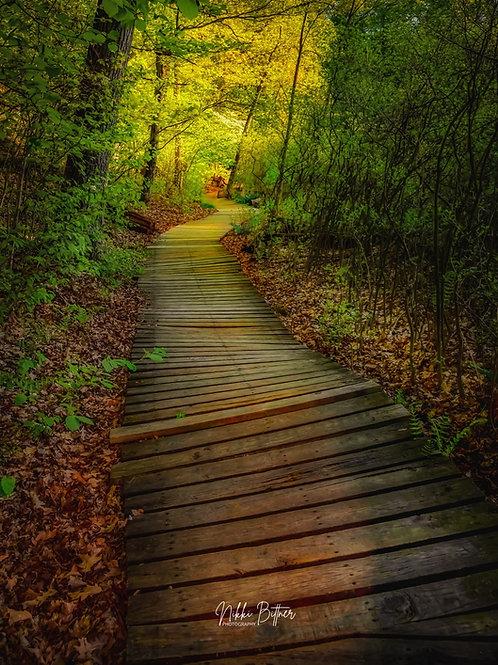 Mendon Ponds Path