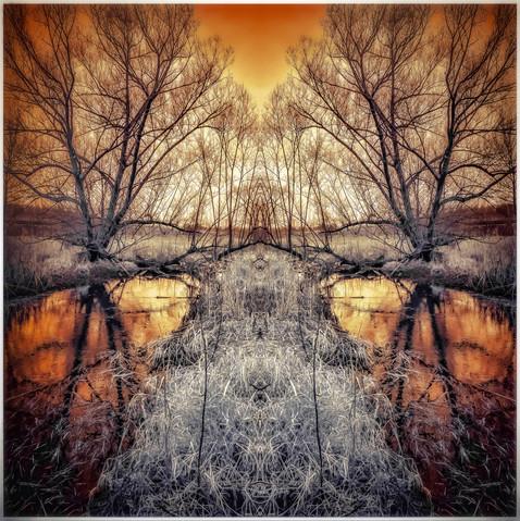 Reflection Wetlands