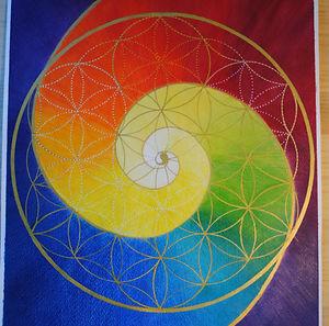 Spirale aurica.jpg