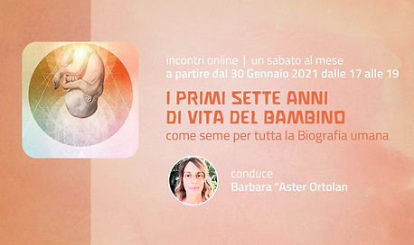 Opera omnia online.jpg