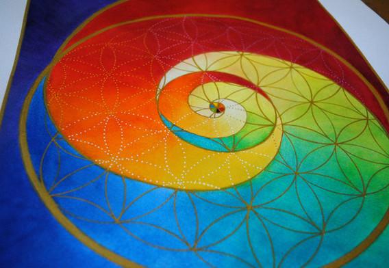 """Equiibrio! spirale aurea"