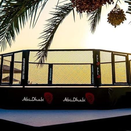 UFC 251: Fight Island Preview