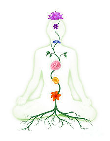 meditating-woman-with-chakras-shown-as-f