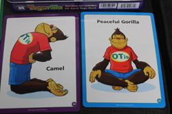 yogarilla 2