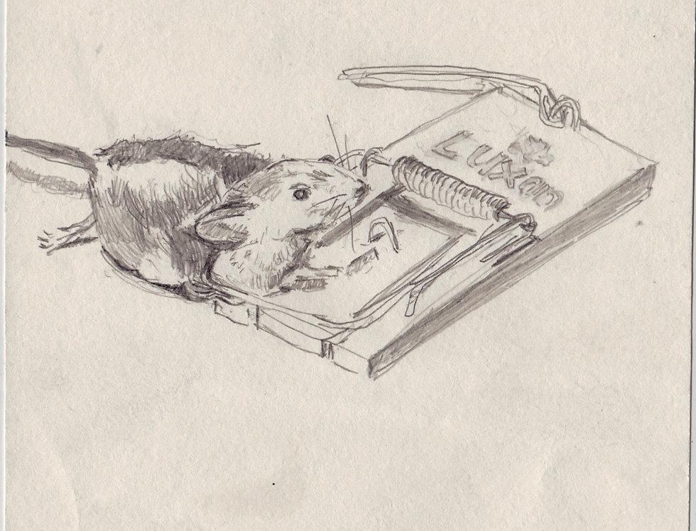 sketch 077