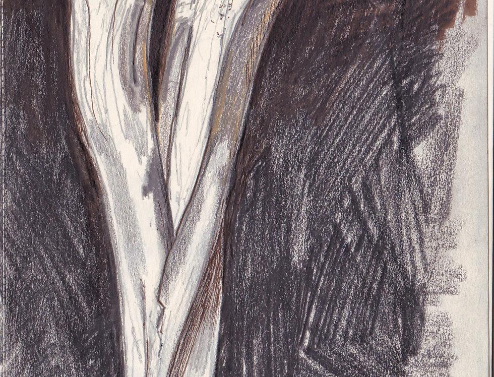 sketch 016
