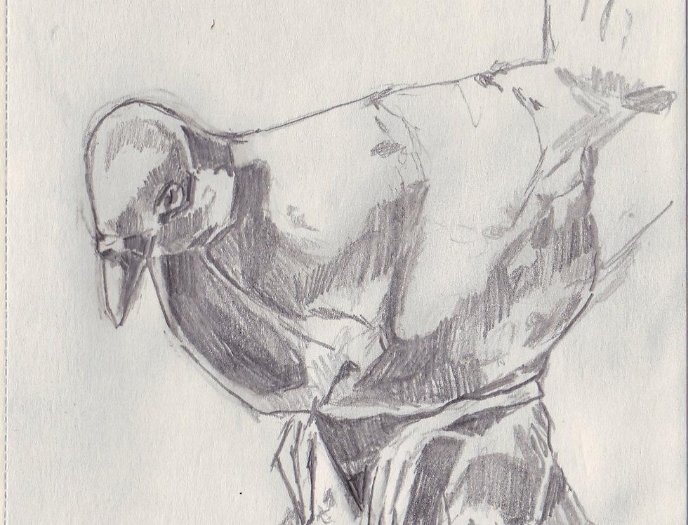 sketch 091