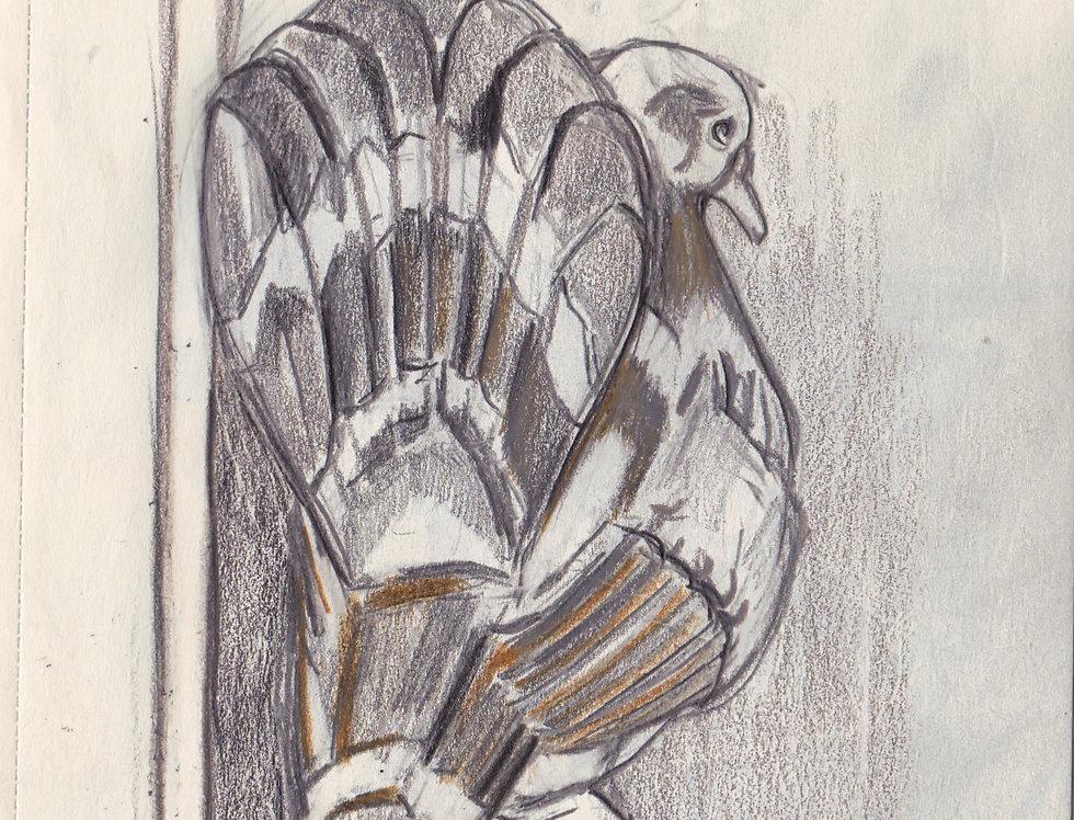 sketch 087