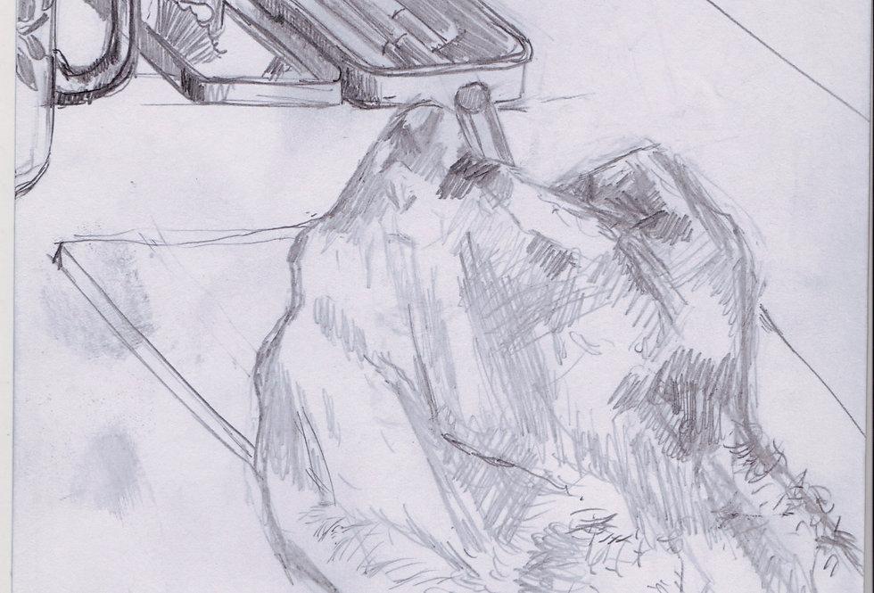 sketch 054