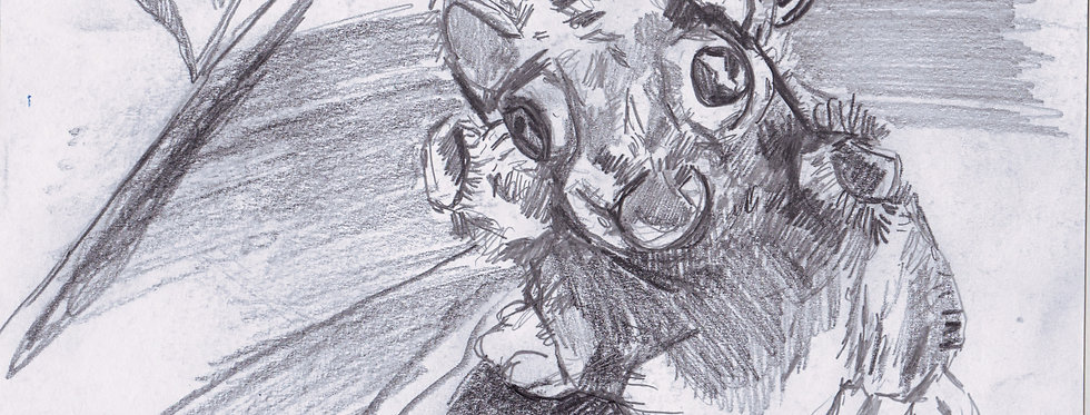 sketch 038