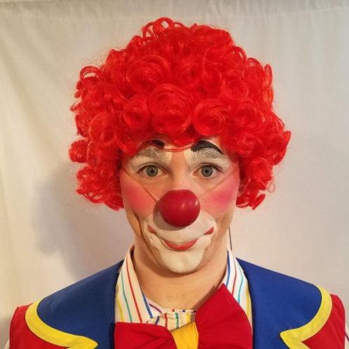 Marin Clown Wig